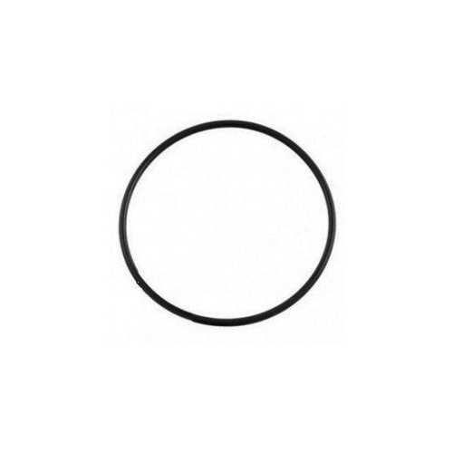 Poolrite SQI / PM O Ring 22136 - Pool Pump Spare Part