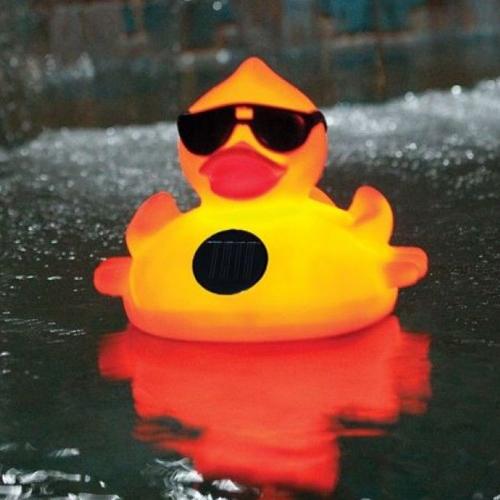 SwimSportz Solar Light Up Duck: Floating Pool Light (large)